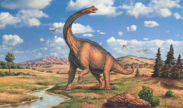 brachiosaurus1 - The Dinosaurs That Walked The Earth - Science and Research