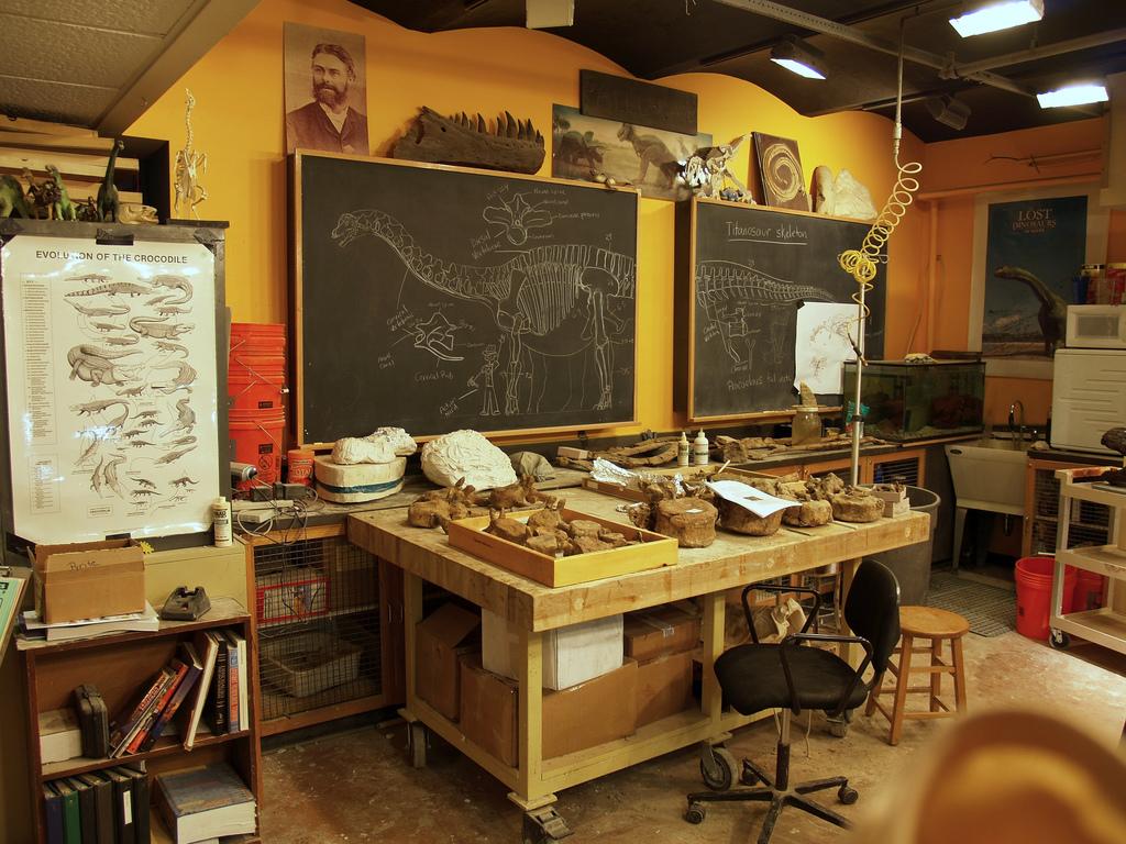 Dinosaurustutkijan työhuone