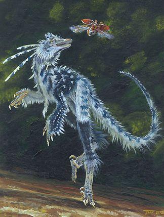 http://www.tunturisusi.com/dinosaurukset/sinovenator.jpg