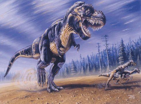 tyrannioviraptori