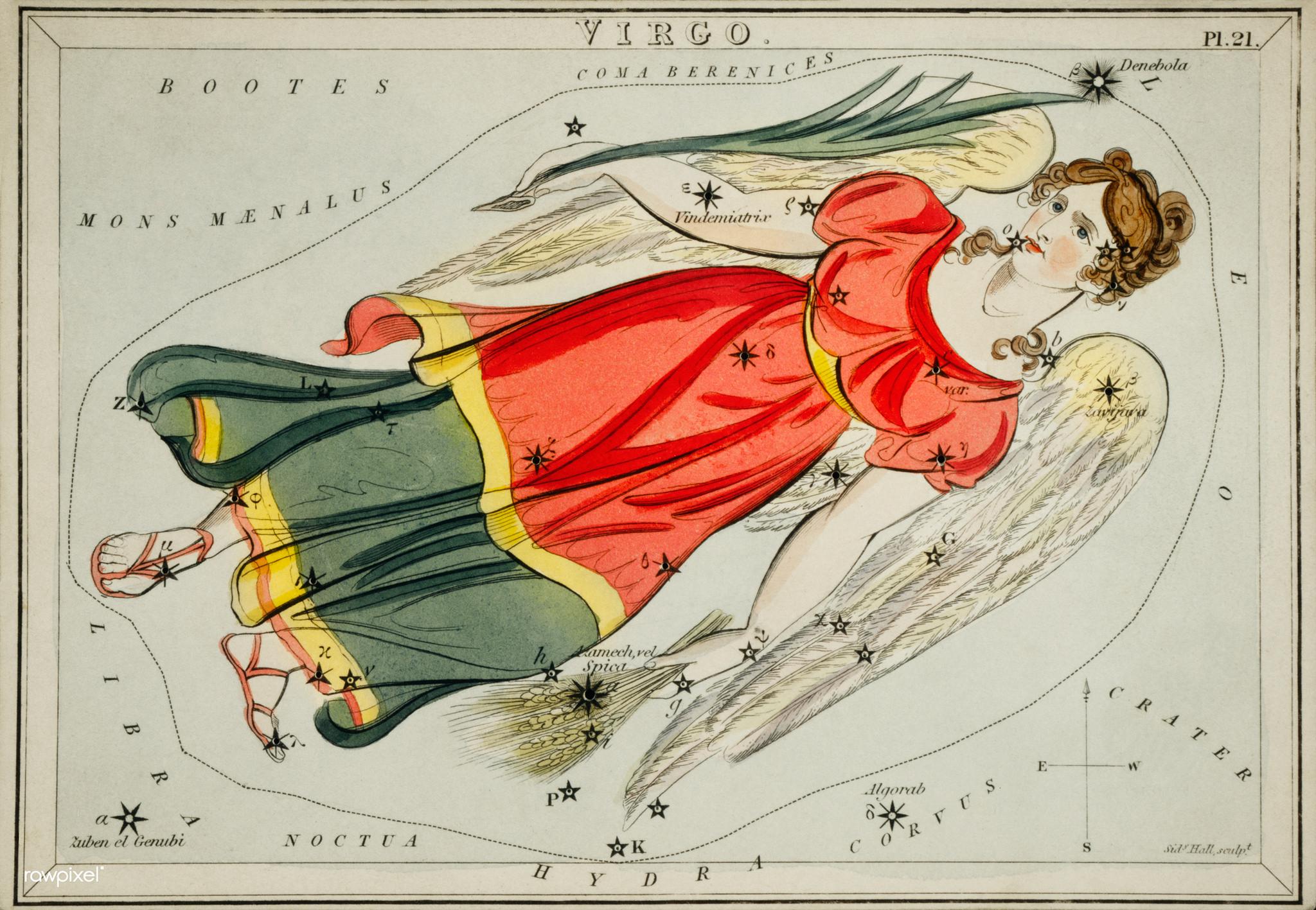 Jousimiehen horoskooppikukka on hyasintti.