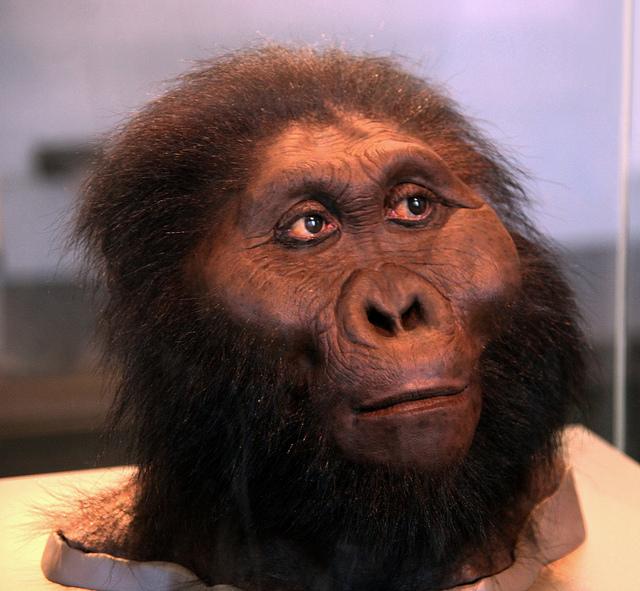 apina Baari nopeus dating10 kysymystä kaveri olet dating