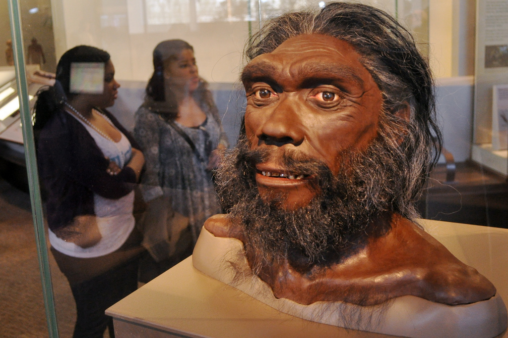 Ihmisen kehitys esihistoriallisena aikana