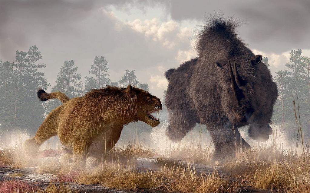 绝对咬合力最强的哺乳动物绝对不是袋狮