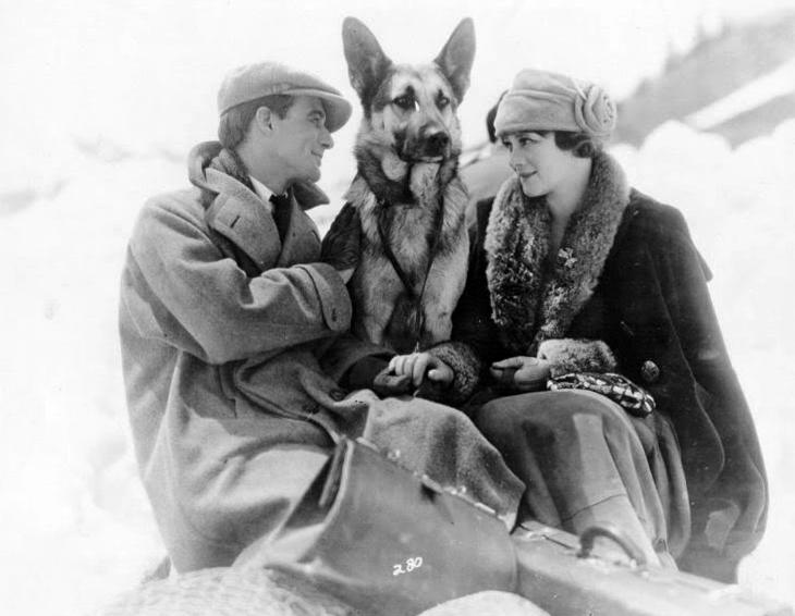 Lassie Elokuva